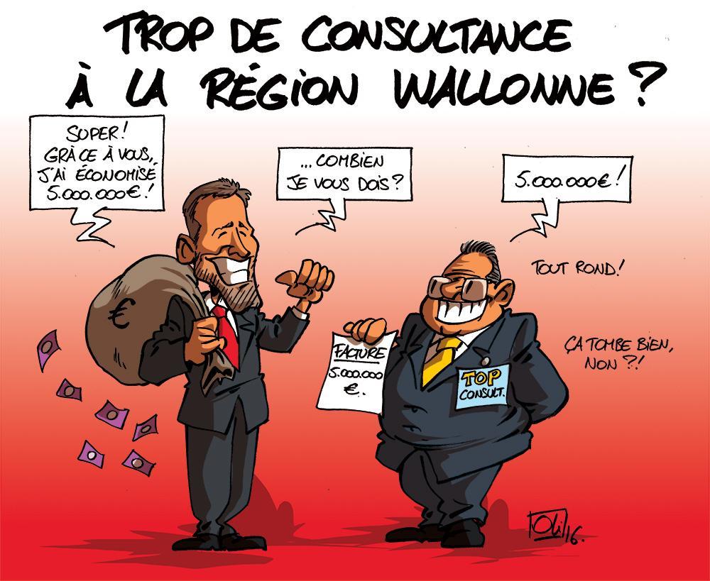 Region-wallonne-Consultance