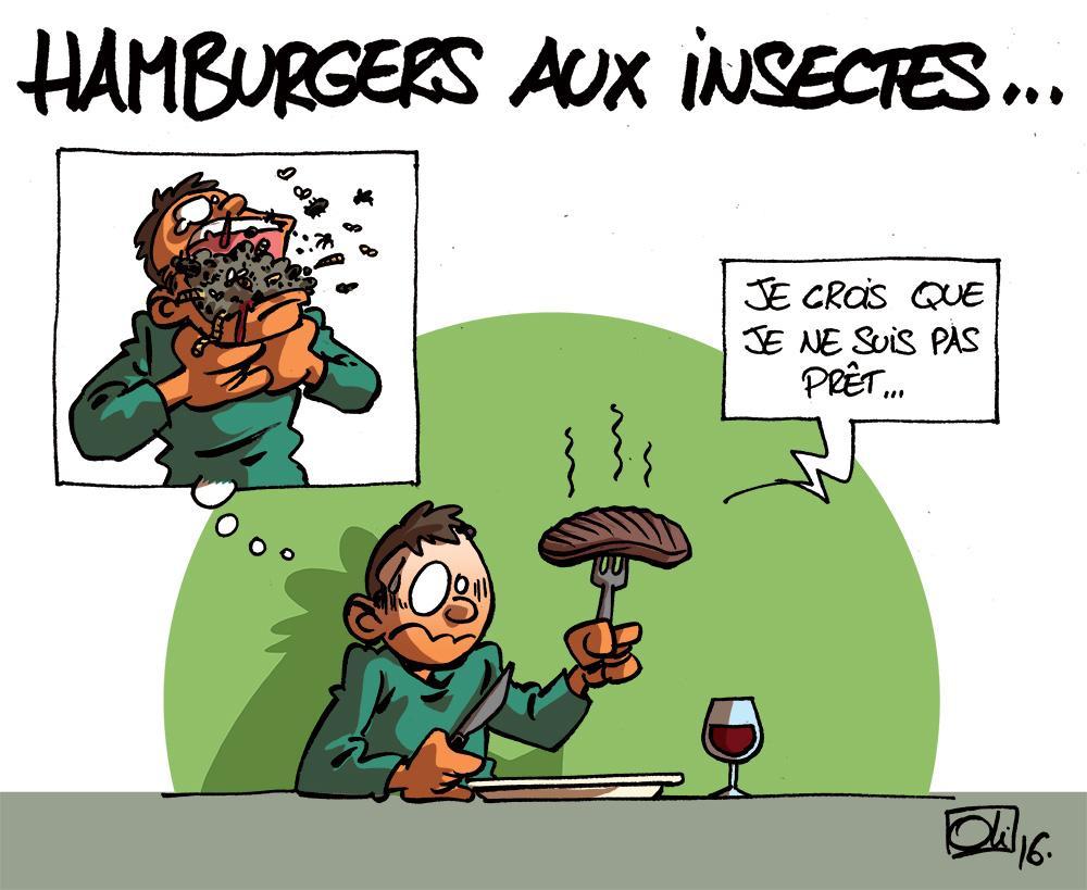 hamburgers-Insectes