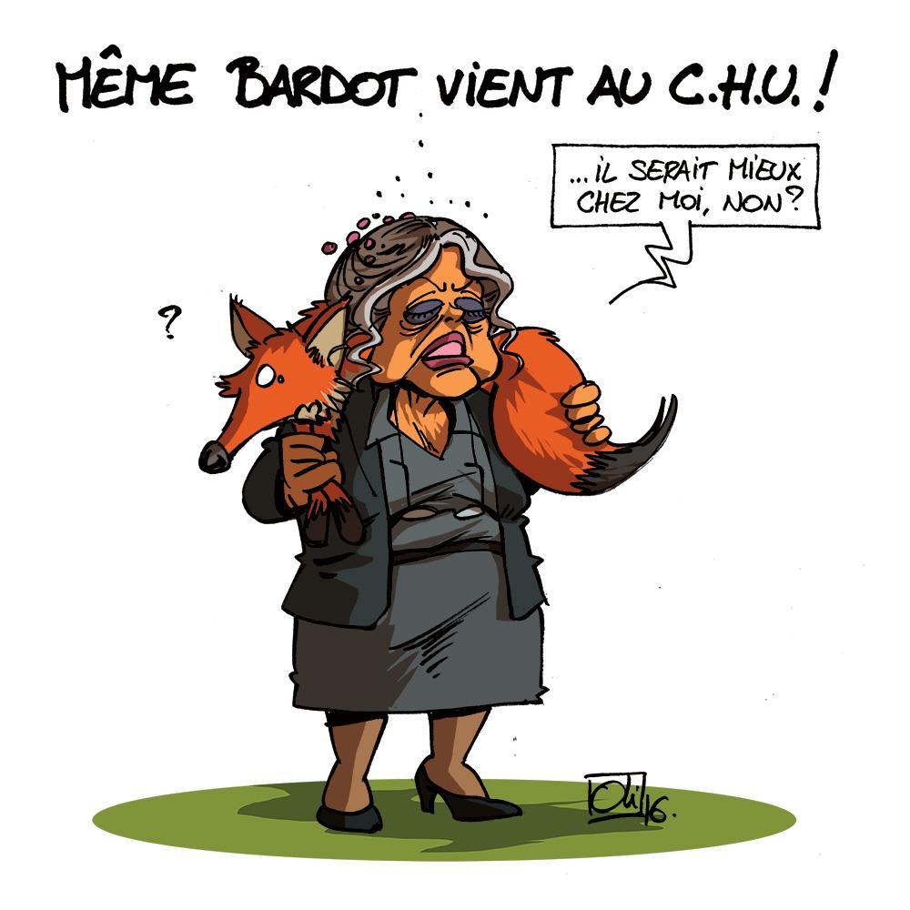 CHU-Renard-Brigitte-Bardot