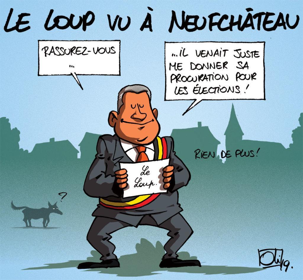 Le loup aperçu à Neufchâteau !