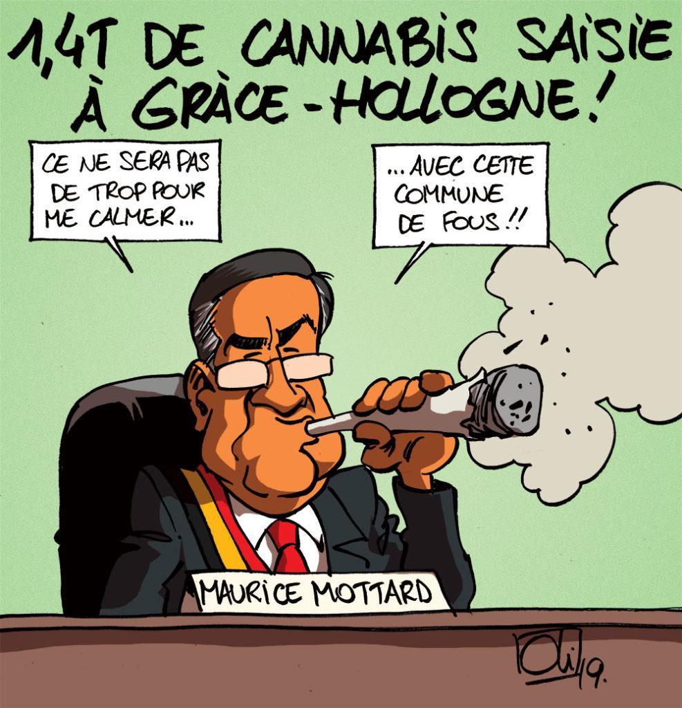 Du cannabis à gogo !