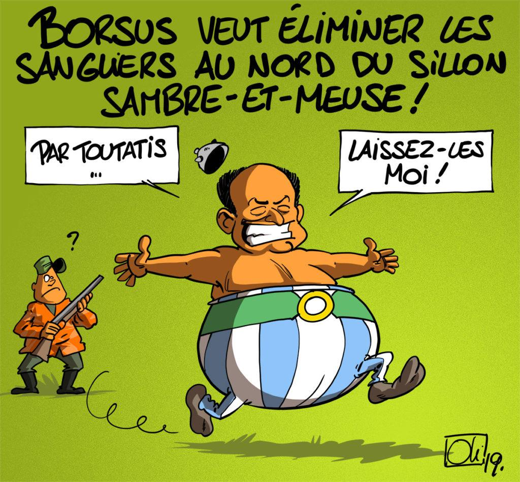 Chasse au sangliers !
