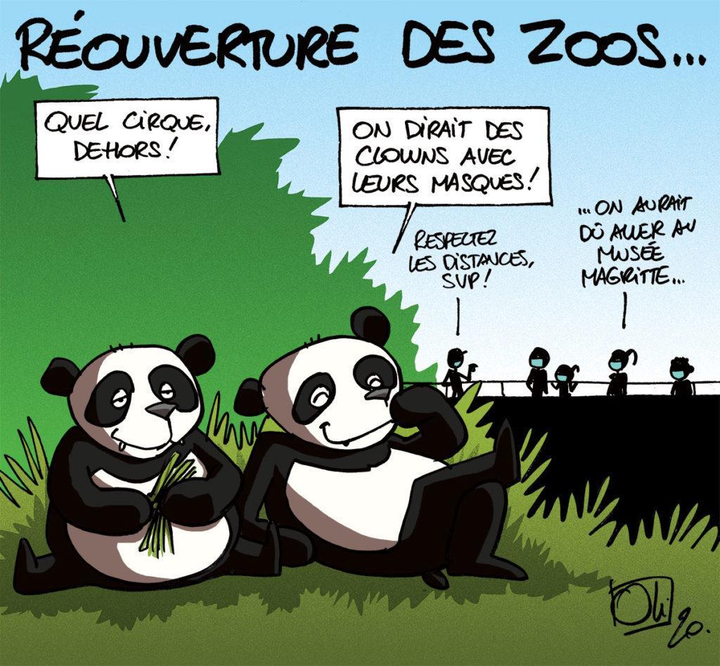 Les parc zoologiques peuvent rouvrir (entre autres)