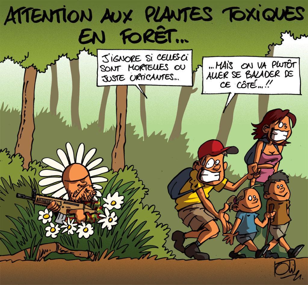 Plantes toxiques en forêt